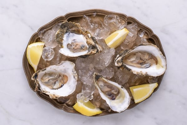 oysters Top 10 Foods For Strong Immune System