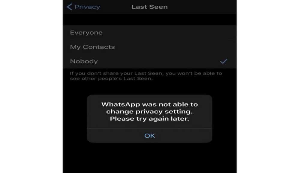 WhatsApp last seen glitch nobody