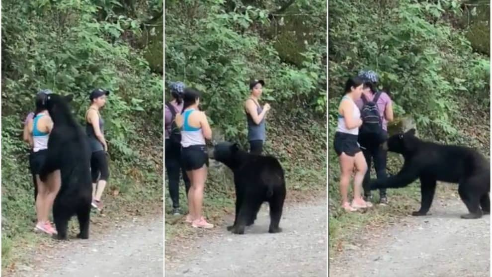 Girl selfie black bear hiker viral video Chipinque Ecological Park Mexico