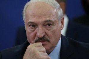 babariko Lukashenko Belarus phased leadership transition