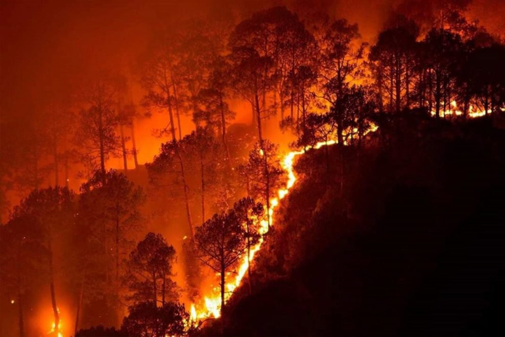 Top 10 Largest Wildfires In California