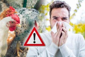 H5N8 bird flu Russia 7 cases