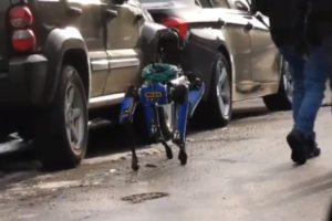 NYPD Robot Dog Bronx Video