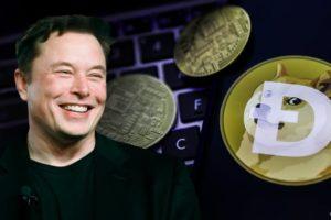 Elon Musk Dogecoin Sel