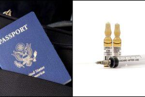 Fake vaccine passports