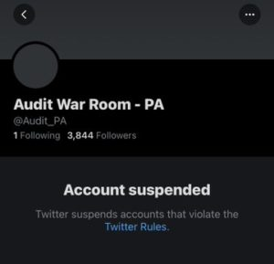 Twitter suspended Maricopa audit account