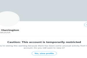 Twitter Liz Harrington account